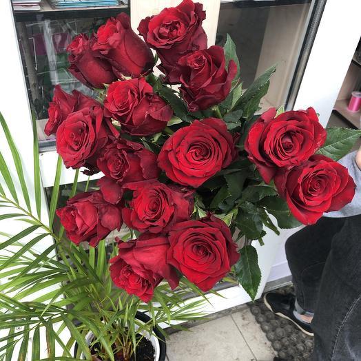 Розы 15