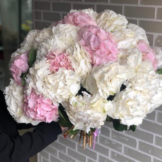 Букет из 35 гортензий: букеты цветов на заказ Flowwow