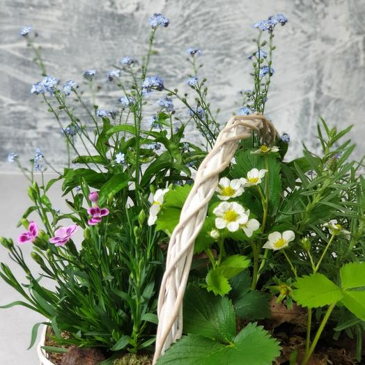 Корзина из незабудок, лаванды и земляники: букеты цветов на заказ Flowwow
