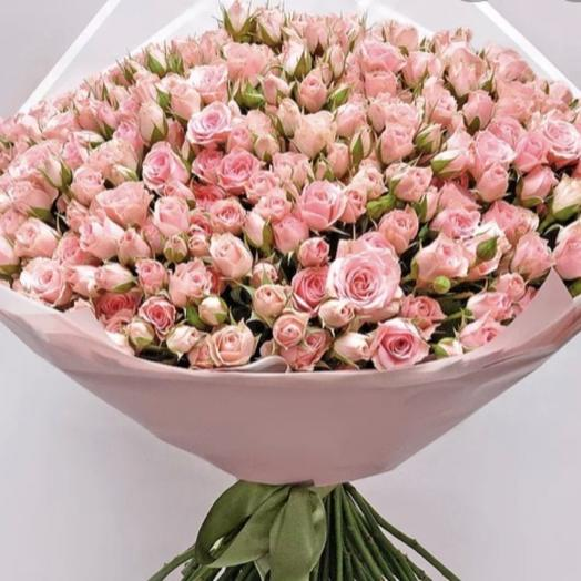 Роза кустовая моно нежный микс