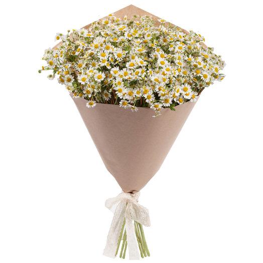 "Букет ""Ромашка"", 15 шт: букеты цветов на заказ Flowwow"