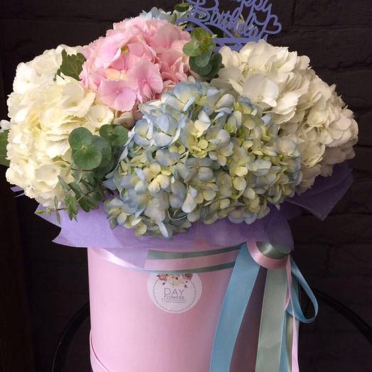 9 пушистых гортензий в шляпной коробочке ко дню рождения: букеты цветов на заказ Flowwow