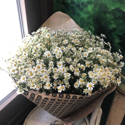 Огромный букет настоящих ароматных ромашек: букеты цветов на заказ Flowwow