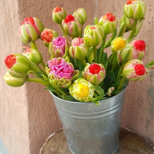 Тюльпаши: букеты цветов на заказ Flowwow