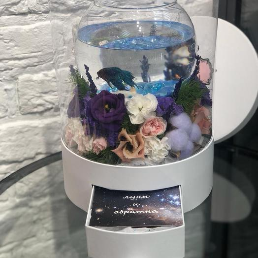 Aqua men: букеты цветов на заказ Flowwow