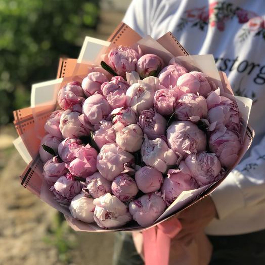 Пионы. Розовые 35 шт. N449: букеты цветов на заказ Flowwow