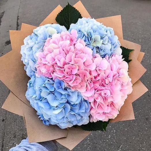 Гортензии в крафтовой упаковке 5 шт: букеты цветов на заказ Flowwow