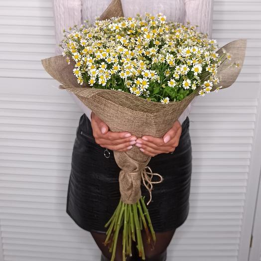 Ромашки ромашки: букеты цветов на заказ Flowwow