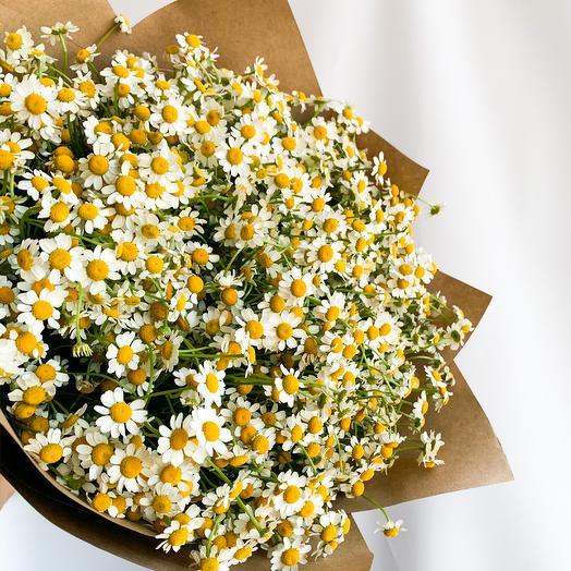 Огромные ромашки: букеты цветов на заказ Flowwow
