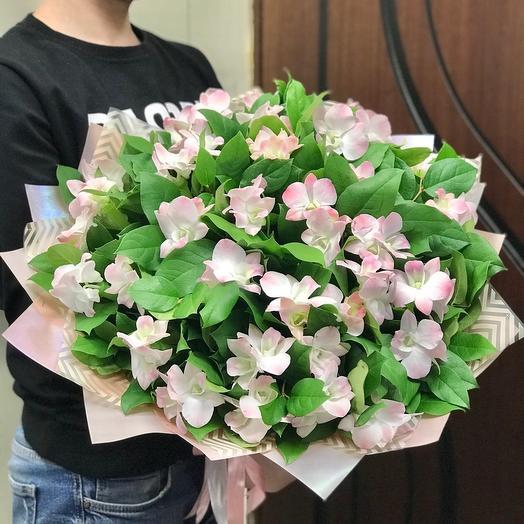 Большой букет орхидей