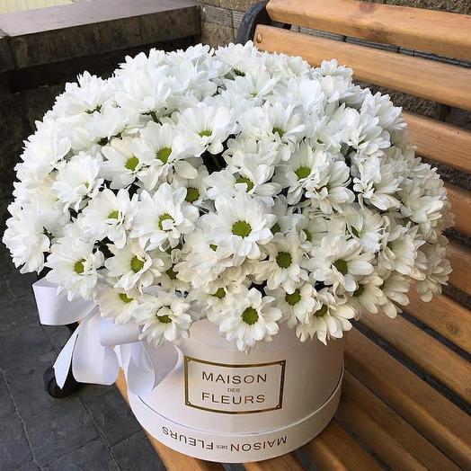 Цветы в коробке Ромашки пышные