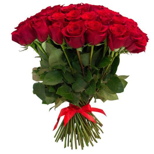Букет из 25 красных эквадорских роз 50см