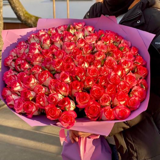 101 роза Джумелия 70 см в премиум упаковке