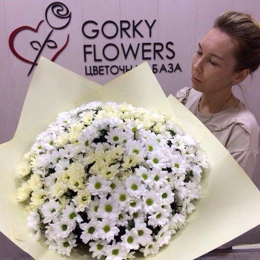 Гигантские ромашек букеты цветов, израиль доставка цветов круглосуточно