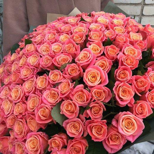 Букет 101 роза Мисс Пигги