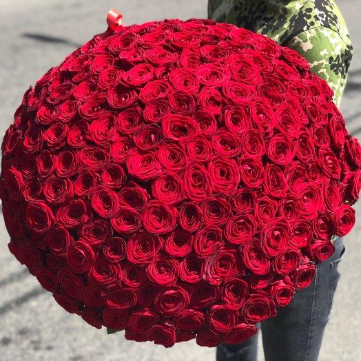 201 роза Рэд Наоми: букеты цветов на заказ Flowwow