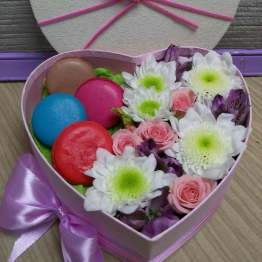 Виола: букеты цветов на заказ Flowwow
