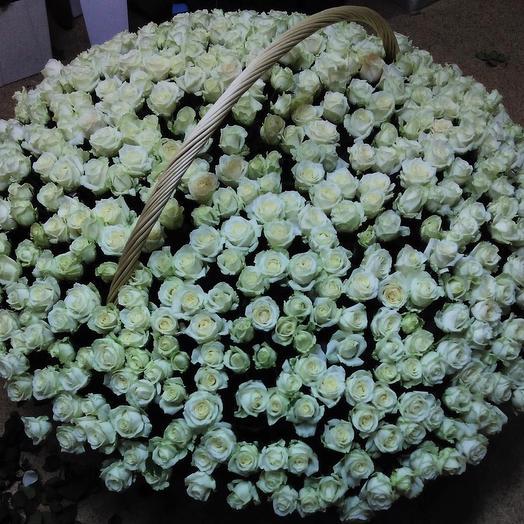 701 Роза: букеты цветов на заказ Flowwow