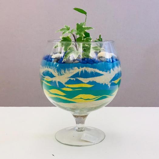 Флорариум «Мальдивы»: букеты цветов на заказ Flowwow