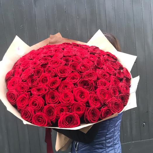 Роза красная 101 шт