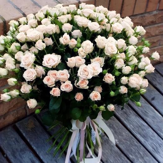 Букет из кремовой кустовой розы (29 шт)