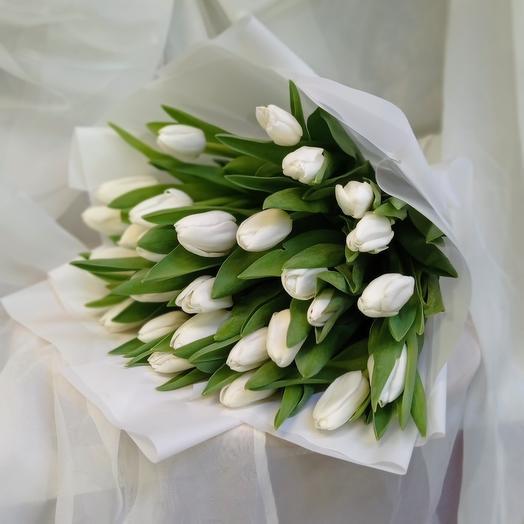Букет тюльпанов  из 27 шт