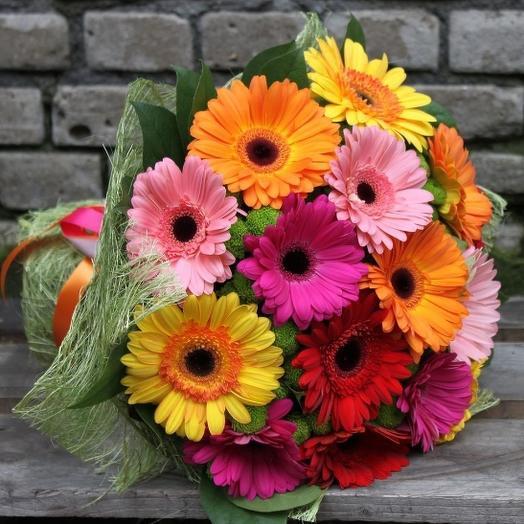 Букет из 13 разноцветных гербер