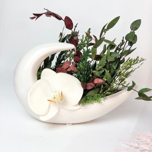 Кашпо волна и орхидея