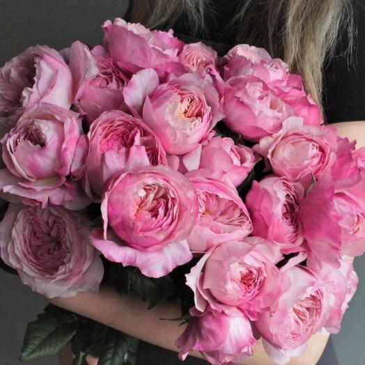 25 роз Пинк интуишн