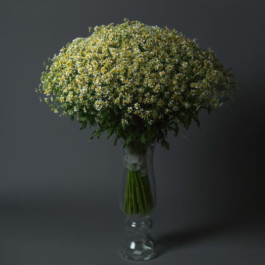 "Букет ""75 Ромашек кустовых"": букеты цветов на заказ Flowwow"