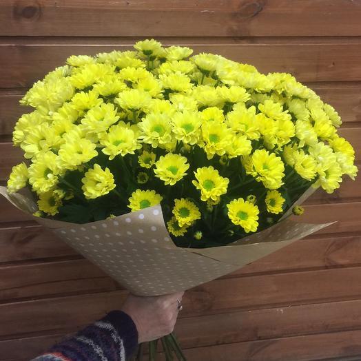 Хризантема кустовая Сантини: букеты цветов на заказ Flowwow