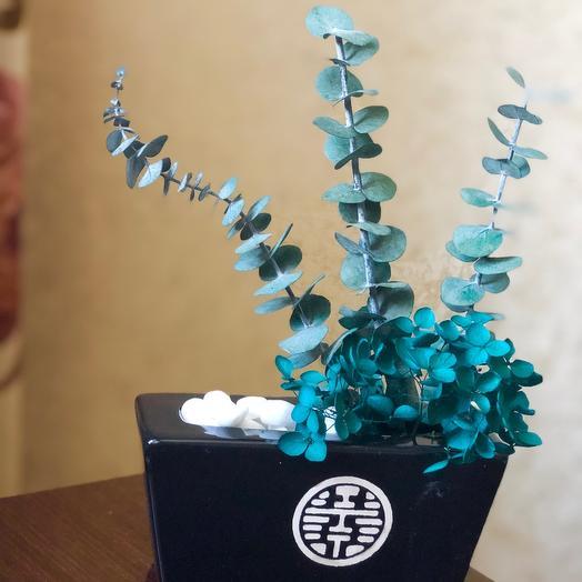 Стабилизированные цветы в кашпо