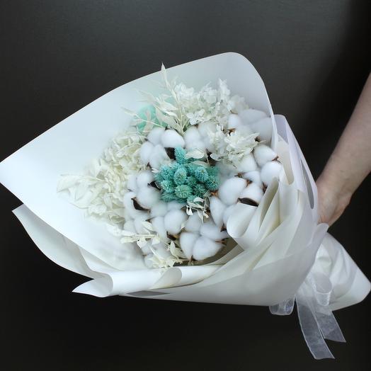Белоснежные сухоцветы