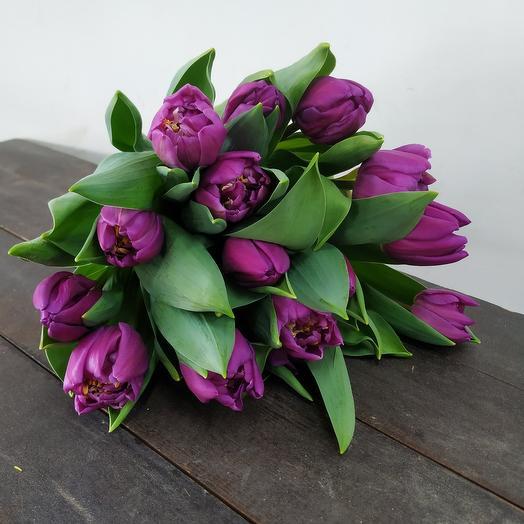 Тюльпан 15 Purple