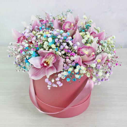 Орхидеи с радужной гипсофилой в коробке