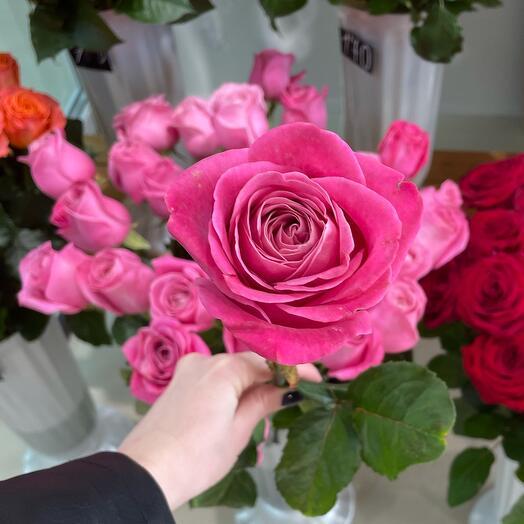 Роза одноголовая 70 см