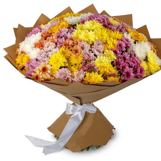 Букет 51 кустовой хризантемы