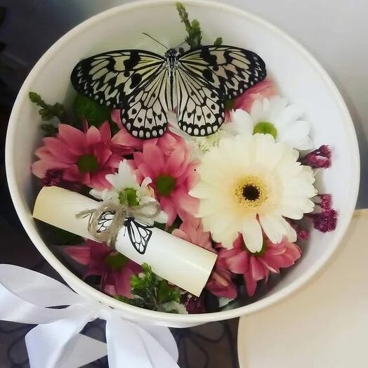 коробка с цветами и живая бабочка
