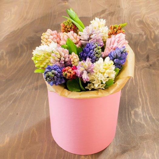 Гиацинт Микс 15шт в шляпной коробке: букеты цветов на заказ Flowwow