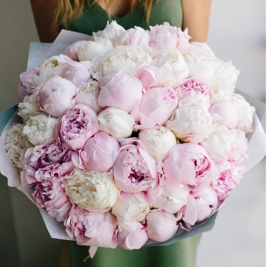 33 пиончика микс: букеты цветов на заказ Flowwow