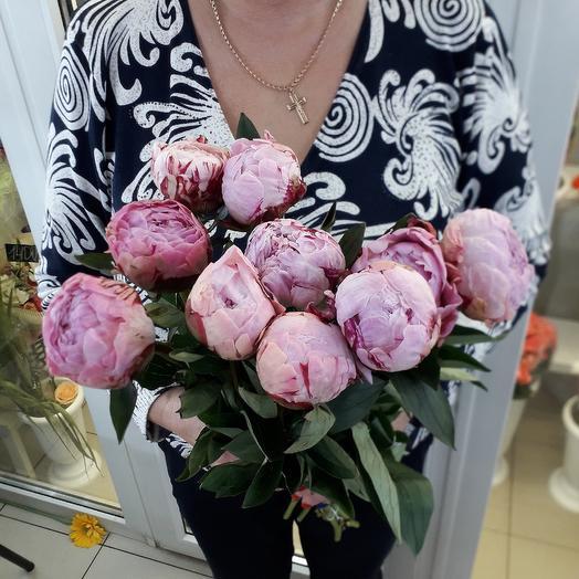 9 пионов Сара Бернар: букеты цветов на заказ Flowwow