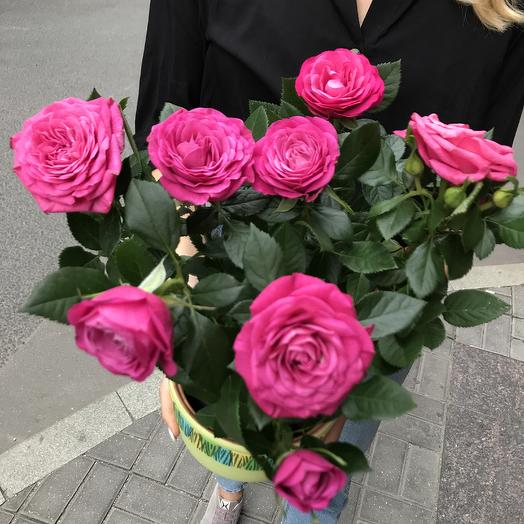 Роза в горшке: букеты цветов на заказ Flowwow