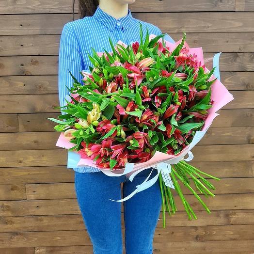 Букет из 23 альстромерий: букеты цветов на заказ Flowwow