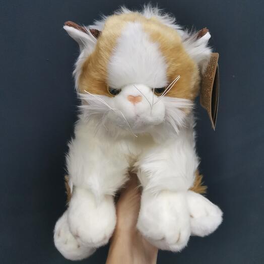 Кошка для котёнка