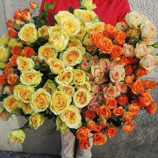 Spray rosas