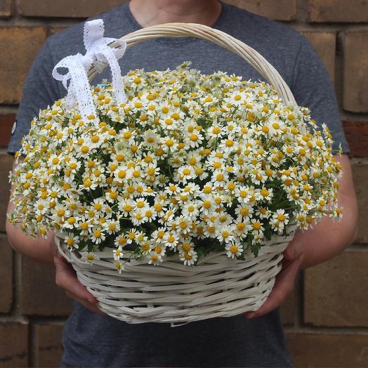 51 ромашка в корзине: букеты цветов на заказ Flowwow