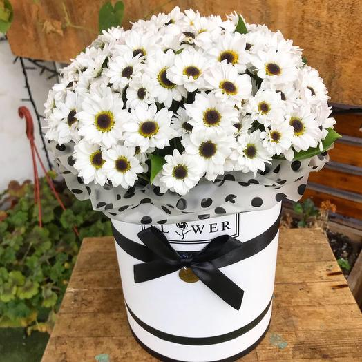 Коробка ромашек: букеты цветов на заказ Flowwow
