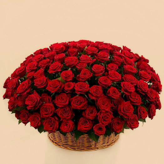 Большая корзина красных роз 101 шт