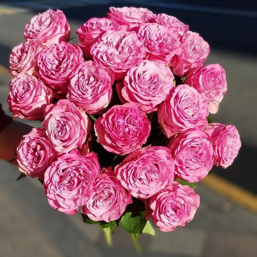 15 Пионовидных Роз Краун Принцесс