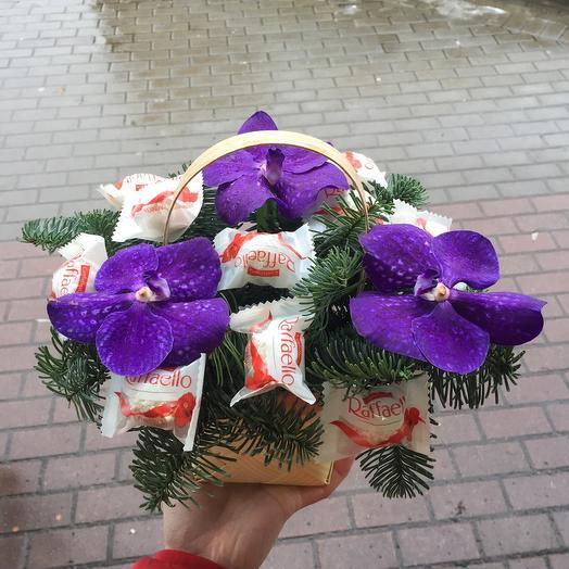 Орхидея с Raffaello в лукошке с хвойными веточками🔥